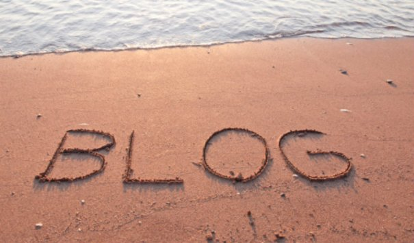 ניהול בלוגים - ריילי מדיה